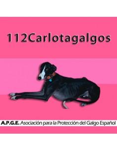 112 Carlota Galgos