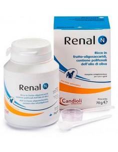 Renal N