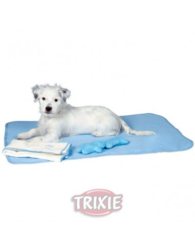 Juego de manta, más toalla, más 2 juguetes para perro