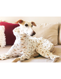 Pijama para galgo modelo koalas