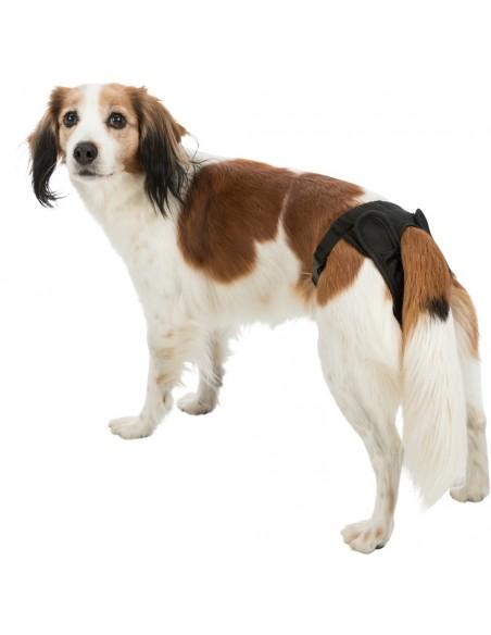 braguita-celo-perra