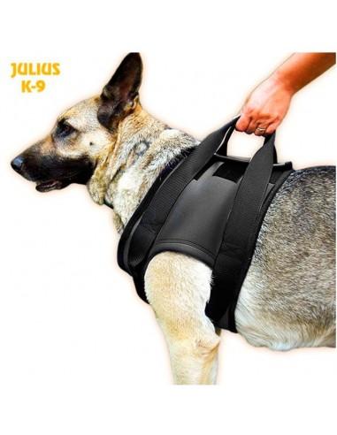 Arnes ortopedico anterior para perro