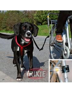 Set con muelle para pasear en bici con su perro