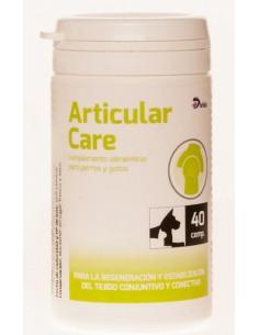 articular care