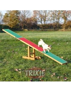 Balancín de agility para perros