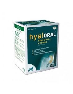 hyaloral acido hialuronico perros grandes