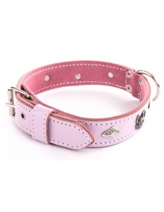 Collares rosa para bulldog frances
