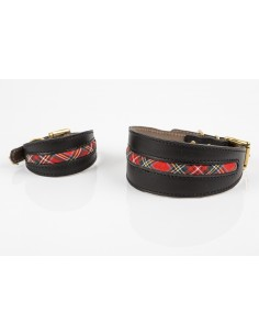 Collar para galgos en piel de Be Two Buckingham Escoces