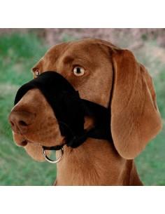Bozal de lazo para perros