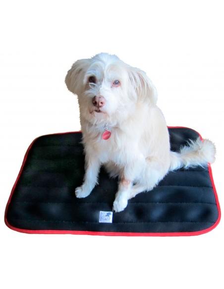 cama terapeutica especial para perros exclusiva de lucas y lola de color negro