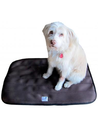 cama terapeutica especial para perros exclusiva de lucas y lola de color marron