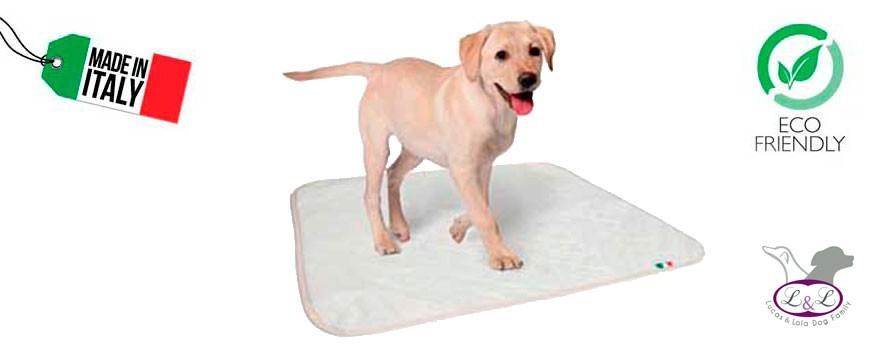 Protector absorbente para camas y empapador para cachorros de CAMON