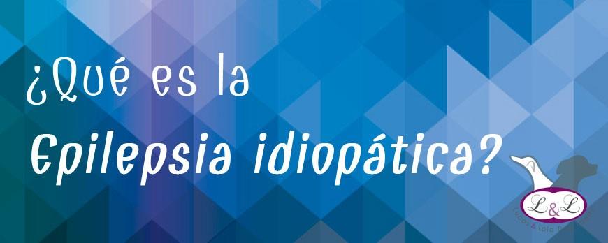 ¿Qué es la epilepsia idiopática?
