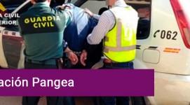 Detenidos en Segovia por irregularidades en la dispensación de medicamentos veterinarios