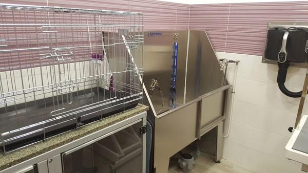 Bañar perros